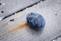 Uovo sodo nero entro le sorgenti di acqua calda delle montagne del vulcano di Owakudani, itinerario del ropeway di Hakone Fotografia Stock Libera da Diritti