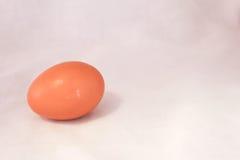 Uovo su fondo bianco Immagine Stock