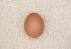 Uovo su riso bianco Fotografie Stock
