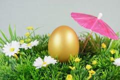 Uovo su un'erba artificiale verde Fotografia Stock Libera da Diritti