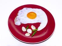 Uovo su un fondo bianco Fotografie Stock