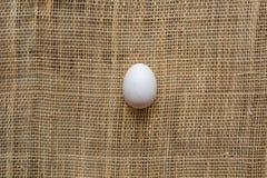 Uovo sulla stuoia del canestro Immagine Stock Libera da Diritti