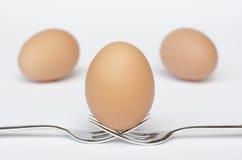 Uovo sulle forcelle e sui precedenti bianchi Fotografia Stock