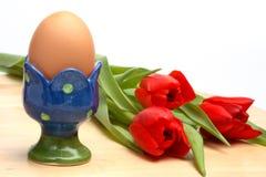 Uovo in tazza ed in tulipani rossi Fotografie Stock