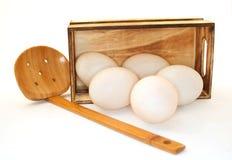 Uovo in un boxd Fotografie Stock