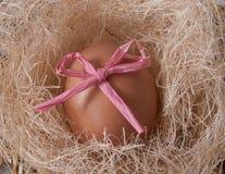 Uovo in un nido Immagine Stock Libera da Diritti