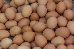 Uovo, uovo del pollo Fotografia Stock Libera da Diritti