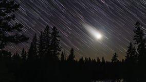 Upływ położenie księżyc w lasowym położeniu z kolorowymi gwiazdowymi śladami zbiory wideo