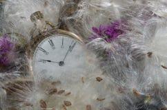 Upływ Czasu: Kieszeniowy zegarek Odpoczywa w Miękkim łóżku trojeści włókna zdjęcie royalty free