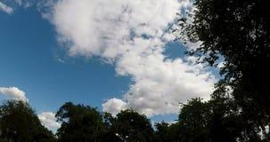 upływu cumulusu Białe chmury Rusza się W niebieskim niebie zdjęcie wideo