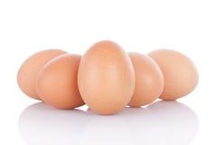 καφετιά αυγά κοτόπουλο&up Στοκ Εικόνες