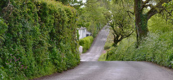 Up and Down a Narrow Country British Road. This hilly road is somewhere in Devonshire England. While I was there I saw tractors with mowing blades upright or on Stock Photo