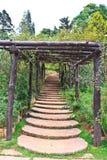 Up the garden path. Royalty Free Stock Photos