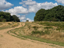 Up hill view in sunshine. Great outdoors, UK. With road, track to horizon royalty free stock photography