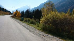 Up The Mountains During Autumn. This stock video shows a view of the road while going up the mountains. Most of the plants and the trees are colored yellow and stock video footage