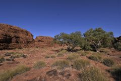 Up on the Rim - Kings Canyon stock photo