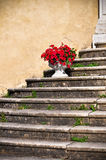 Up staircase Royalty Free Stock Photography