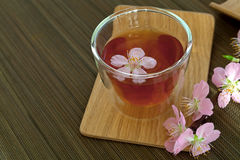 Сup of tea with blossom branch Stock Images