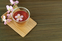 Сup of tea with blossom branch Stock Image