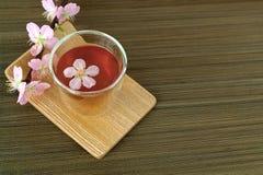 Сup of tea with blossom branch. Сup of tea with blossom pink flowers cherry branch. Selective focus Stock Image