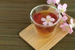 Сup of tea with blossom branch. Сup of tea with blossom pink flowers cherry branch. Selective focus Stock Images