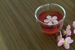 Сup of tea with blossom branch Stock Photos