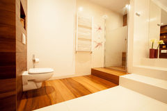 Up-to-date bathroom. Picture of new up-to-date bathroom in big luxury house Royalty Free Stock Photos