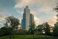 Up view of skyscraper from city park royalty free stock photo