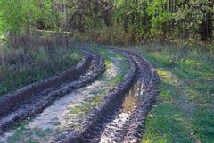 Upaćkana wiejska droga gruntowa Zdjęcie Stock