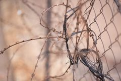 Upaćkany Abstrakcjonistyczny drutu kolczastego fechtunek obrazy stock