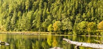upadek jeziora Fotografia Stock