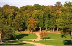 upadek park Obraz Royalty Free