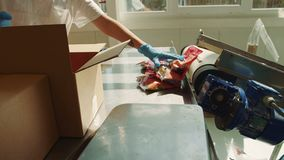 Upakowani cukierki na konwejerze Cukierek fabryka zbiory wideo