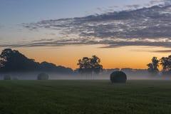 Upakowani rola traw w wczesnym poranku Zdjęcia Stock