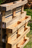 Upcycling garden of wooden pallets. Create a vertical garden with Euro pallets - upcycling trend Royalty Free Stock Images
