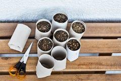 Upcycling salowy ogrodnictwo Zdjęcie Stock
