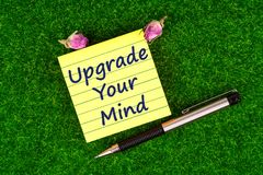 Upgrade your mind. In sticky note with pen and dried rose buds on grass royalty free stock images