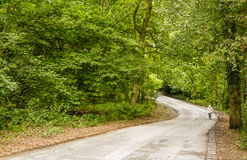 Uphil. Lone traveler exerting himself on an uphill path Stock Photography