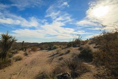 Backcountry road in the desert. Uphill backcountry road in the Mojave desert. Image taken in the Joshua Tree National Park, California royalty free stock images