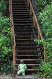Uphill battle. Baby faces uphill battle, challenge or climb with long flight of stairs Stock Image