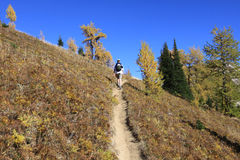 Uphill Hike. An intrepid hiker heads for the summit Stock Image