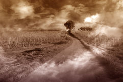 Uphill road scenery. Fantasy view with lonely road and fog Stock Images