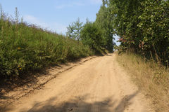 Uphill rural way along the edge of the forest Royalty Free Stock Photography