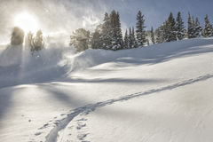 Uphill ski track on a windy day in the Tetons. royalty free stock photography