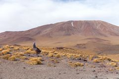 An uphill view of the volcano in National Park of Bolivian Altiplano, Uyuni. Stock photo Royalty Free Stock Photo