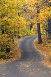 Uphill Winding Autumn Canopied Road Royalty Free Stock Photo