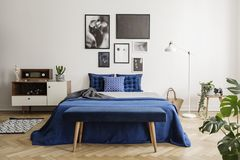 Bench on a wooden herringbone parquet in a bright and artistic bedroom interior with navy blue textiles royalty free stock photos