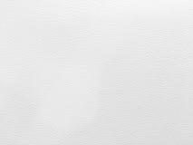 upholstery för bakgrundslädermodell yttersida closeup, kläder, w Arkivfoto