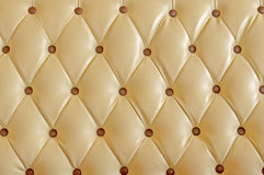 Upholstery leather. Pattern for background Stock Image