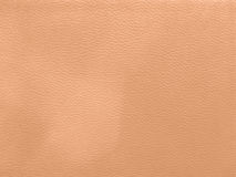 Upholstery leather pattern background.surface,closeup,clothing,w Stock Photos